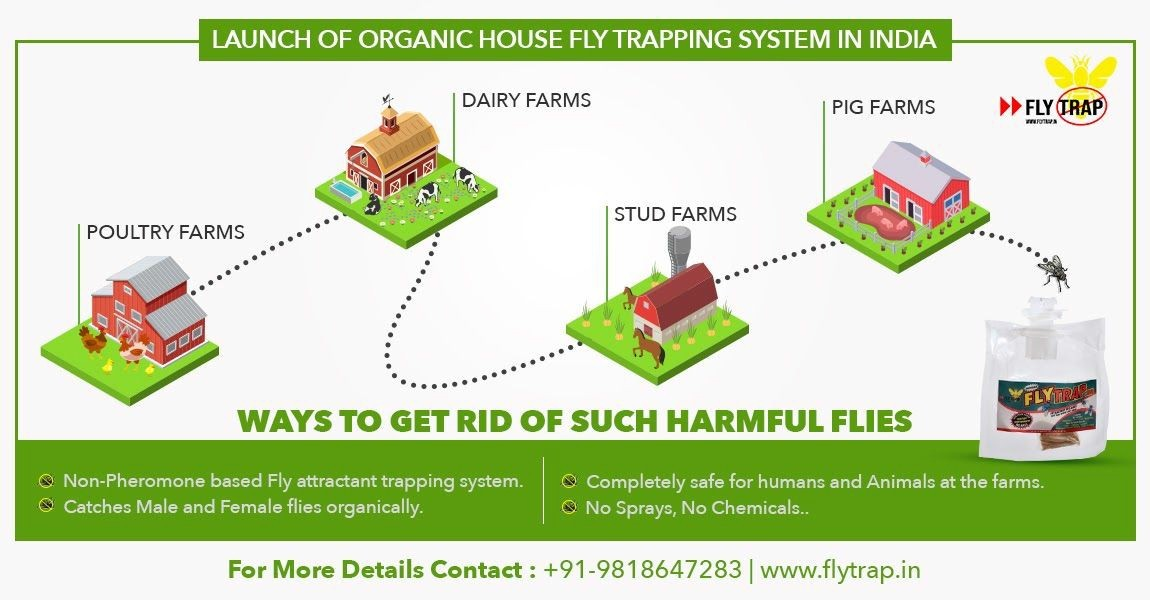 Image for Fly Trap - Launch of Housefly Trapping Systems in India
